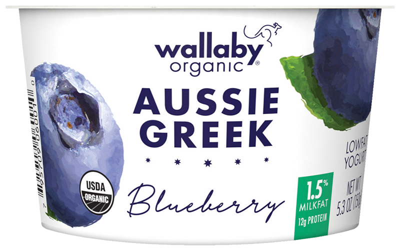 Wallaby Blueberry Organic Greek Low Fat Yogurt
